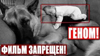 СЛАБОНЕРВНЫМ НЕ СМОТРЕТЬ!!! ТАЙНА ГЕНОМА ЧЕЛОВЕКА!!! 06.12.2020 ДОКУМЕНТАЛЬНЫЙ ФИЛЬМ HD