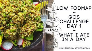 What I Ate / GOS Challenge Day 1 / Vegan Low FODMAP / Wednesday