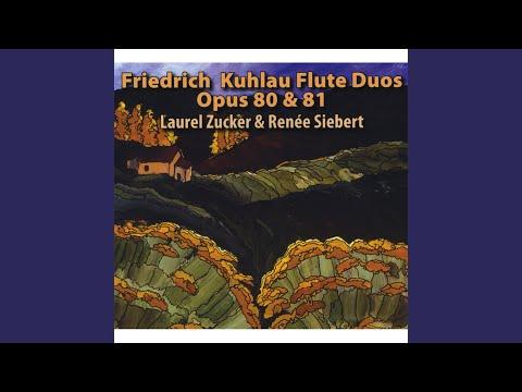 Duo No. 3, Op. 81: II. Andante con moto