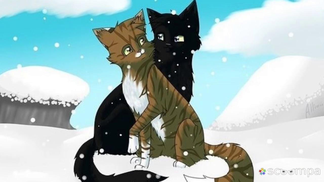 Коты воители картинки грач