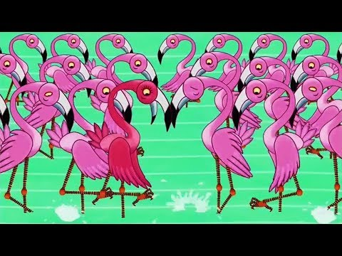 Tinga Tinga Tales Official   Why Flamingo Stands on One Leg   Tinga Tinga Tales Full Episodes