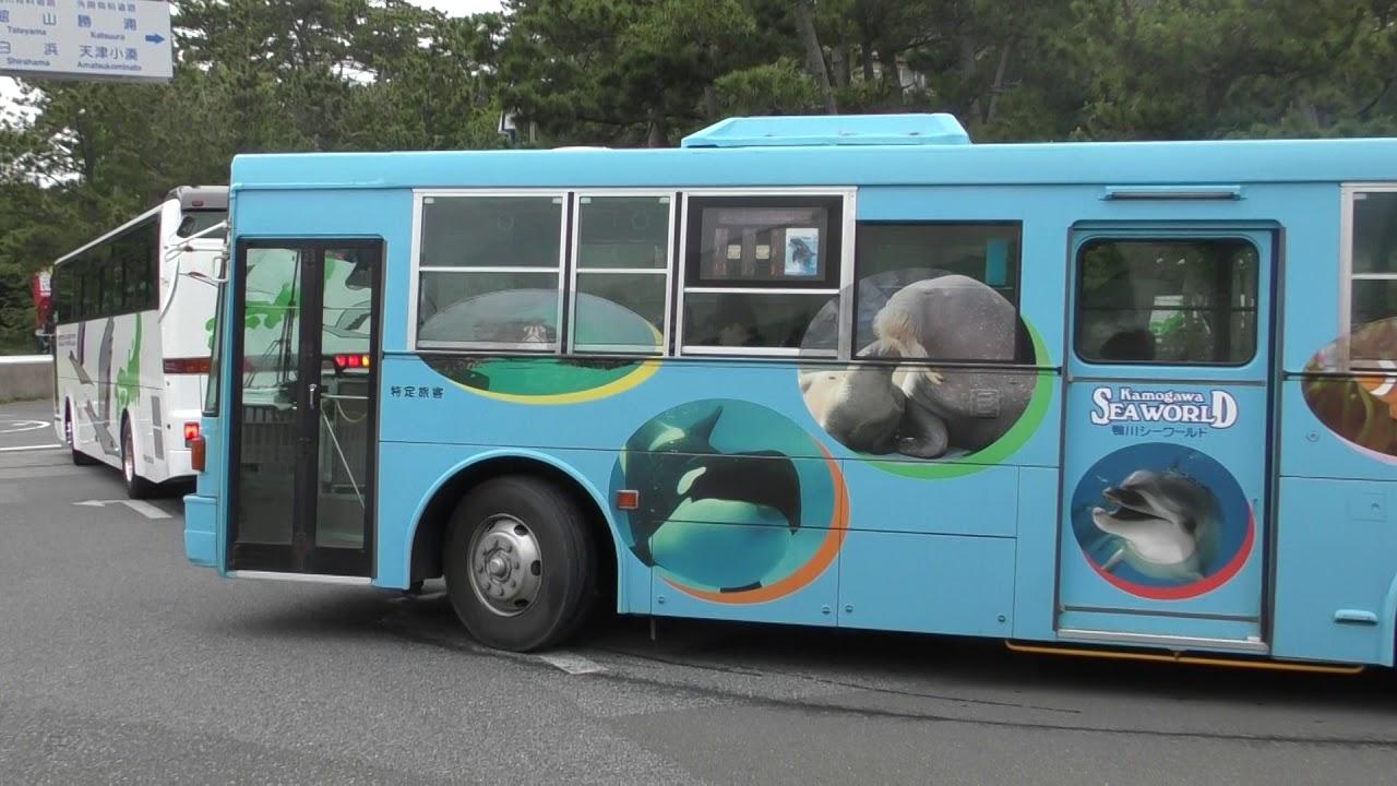 鶴のイラストが印象的な紅仙観光バスと鴨川シーワールドの無料送迎バス