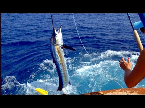 BEST Fishing of my Life!! Costa Rica Sport Fishing!!