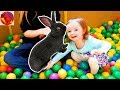 We Found The Easter Bunny! - Box Fort Ball Pit Easter Egg Hunt with 100+ Easter Eggs