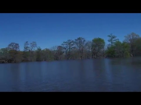 canoeing the flooded Ouachita River
