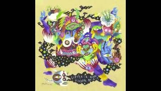 Little Dragon- Runabout