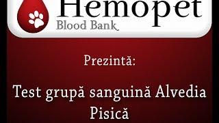 test grupa sanguina online)