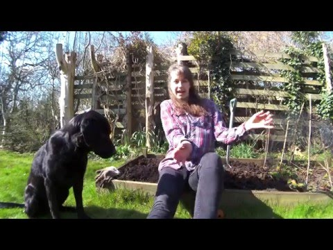 Learn to sing with Amy and Lola - Wiggly Woo Worm Song