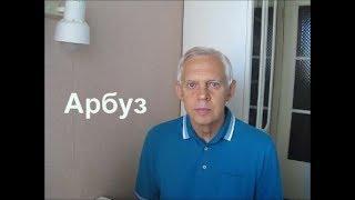 Арбуз watermelon Alexander Zakurdaev