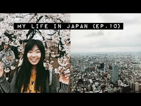 Thumbnail: Getting Lost AF + Cherry Blossom Viewing! 🌸🏙 | Japan Vlog (Ep.10)