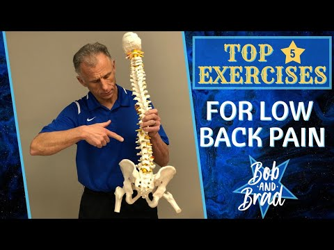 Top 5 Exercises For Chronic Low Back Pain