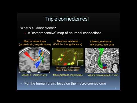 The Human Connectome Project, Dr. Jennifer Elam