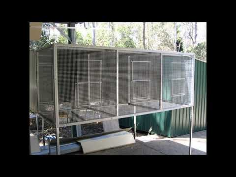 How To Build An Aviary For Parrots
