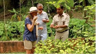 Organic Garden Tour at Four Seasons Tented Camp Golden Triangle