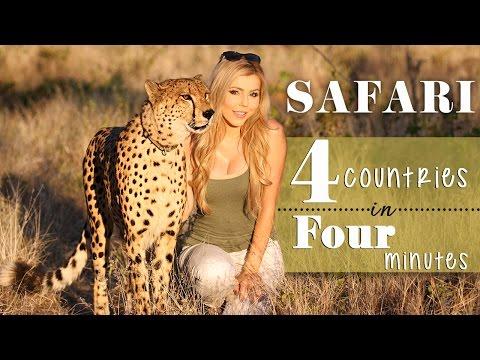 Safari: 4 countries in 4 minutes