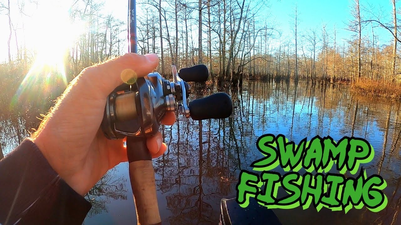 Loaded Swamp Bass Fishing | November Buzzbait Fishing
