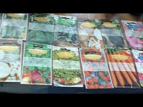 Получил голландские семена из Финляндии, краткий обзор сортов.
