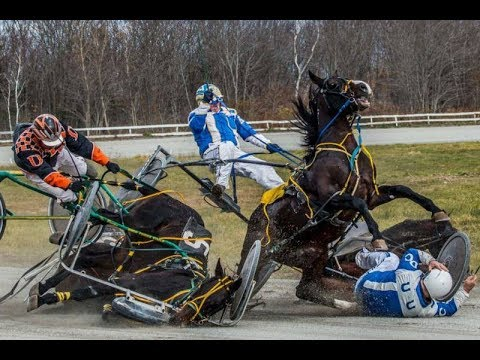 ‫horse racing accidents death 2018 -   Horse racing accidents in kolhapur - horse race - horse- pc