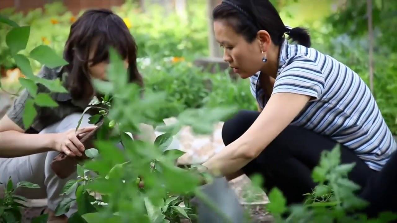 Baum Und Garten ger310 baum und garten patenschaft