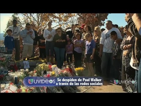 Fanáticos de paul Walker se despiden por medio de las redes sociales -- Exclusivo Online Videos De Viajes