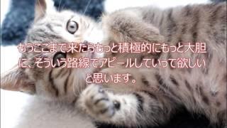 SKE48石田安奈さんへのファンレター http://akb48fanletter.com/ishida_...