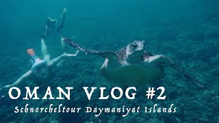 Schnorcheln Daymaniyat Islands | OMAN VLOG #2