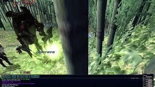 FFXI - Dualboxing An Aeonic: Schah