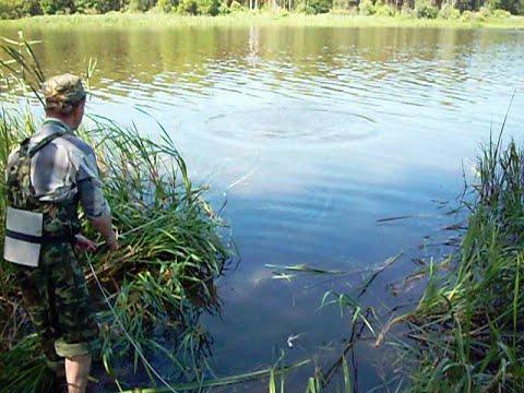 Донная коса, донные грабли. Любому рыболову для удачной рыбалки необходимо найти подходящее место. А по закону подлости по приезду все.
