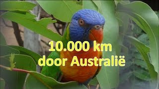 10 000 km door australi