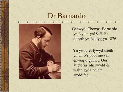 Dr Barnardo Welsh