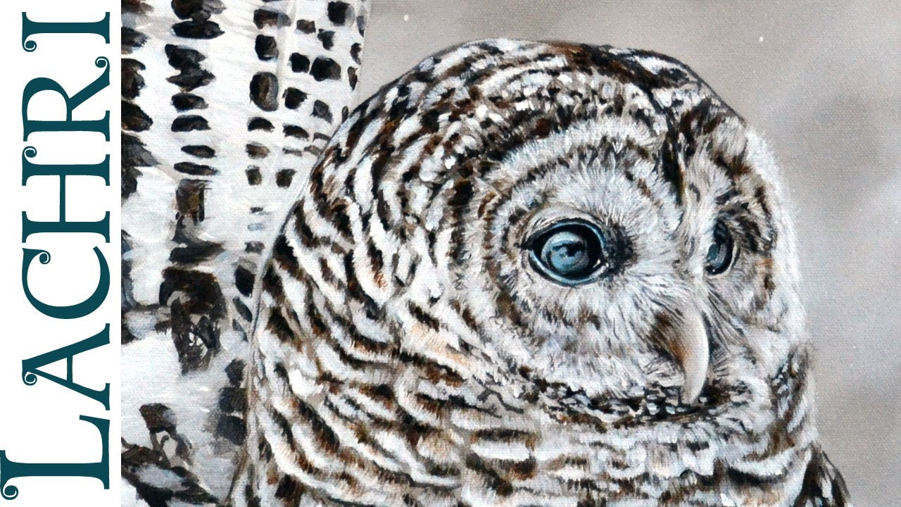 Speed Painting Barred Owl Oil Over Acrylic Time Lapse