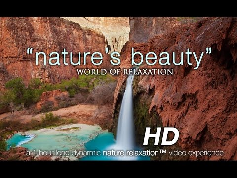 """Nature's Beauty: World of Relaxation"" 1 HR Video w/ Instrumental Music 1080p HD"