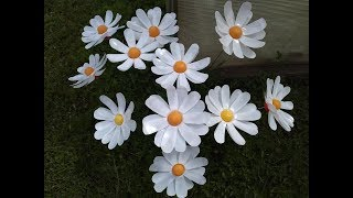 DAISY FROM a plastic BOTTLE / How to make FLOWERS from plastic bottles with Their hands