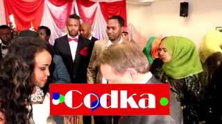 Aroos is dhex galka dhaqamada / Somali and Swedish.