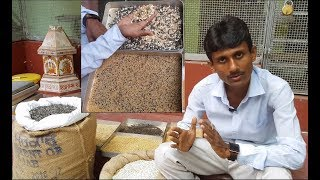 How to Make Mix Seeds For Parrots and Birds / Best Mixed Seeds For Parrots and Birds.