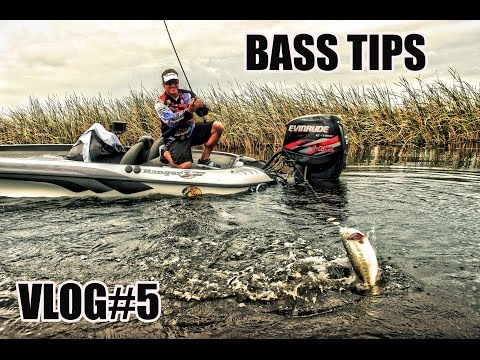 ADVANCED - Bass Fishing tips from Scot Martin - Helps you catch more Bass - VLOG #5