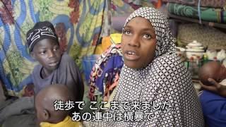 ナイジェリア:国内避難民の食糧危機【国境なき医師団】
