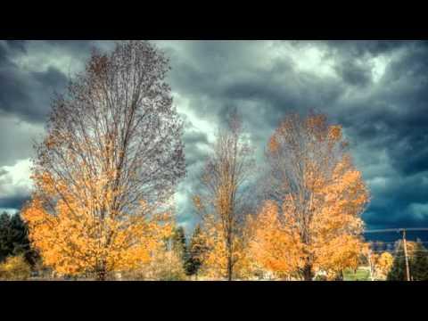 Осень постучалась к нам  Чистякова Александра