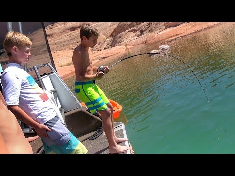 Kid Catches Giant Catfish!