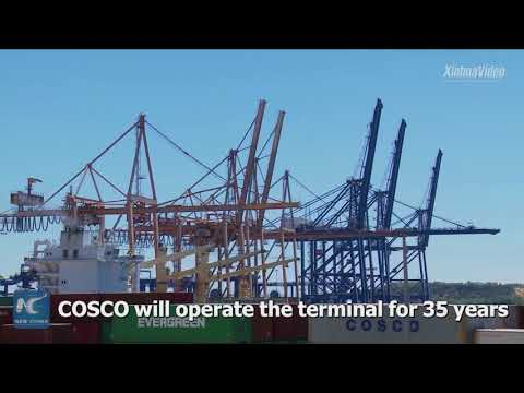 China's COSCO breaks ground on new container terminal in Abu Dhabi