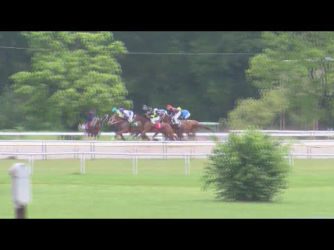 Third Horse Euthanized At Louisiana Downs In 2 Months