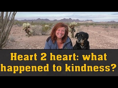 Friendly Heart to Heart: Where Has Kindness Gone?