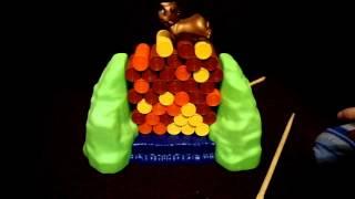 Настольная игра Весёлый бобёр Билли(Увлекательная игра для детей, помогающая развить координацию, усидчивость, внимание и ловкость. Купить..., 2016-02-07T16:30:00.000Z)