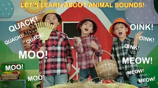 Guess That Animal Sound   Pop Babies