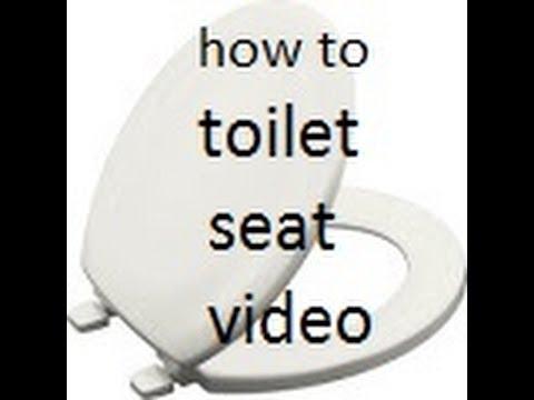 Toilet Seat Video