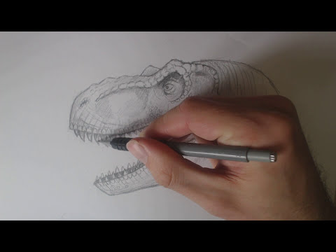Learn how to Draw a Jurassic Park Trex Head for intermediates. Tutorial Part 2