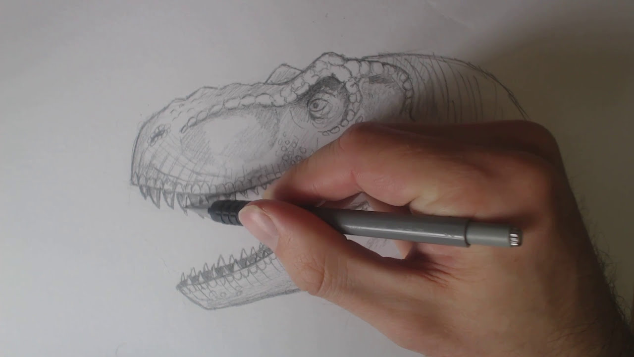 How to draw indominus rex scales jurassic world youtube - Learn How To Draw A Jurassic Park Trex Head For Intermediates Tutorial Part 2 Youtube