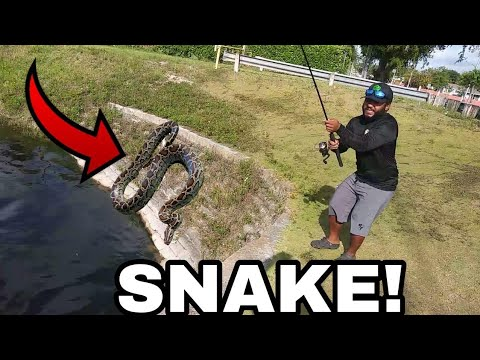 Invasive SNAKE Caught while Fishing!!! (Help Identify)
