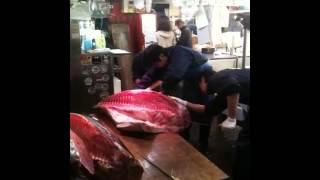 CUTTING BLUEFIN TUNA AT TSUKIJI FISH MARKET / TOKYO 2013 (築