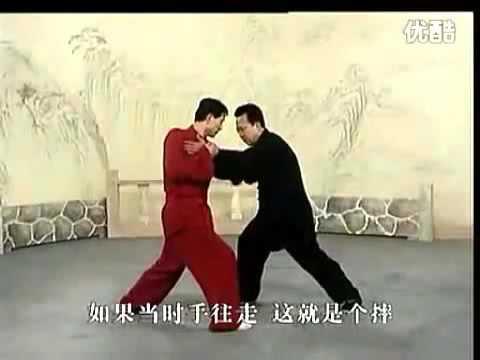 八极拳 八极单打(李俊义) Baji Quan Baji Danda - Li Junyi